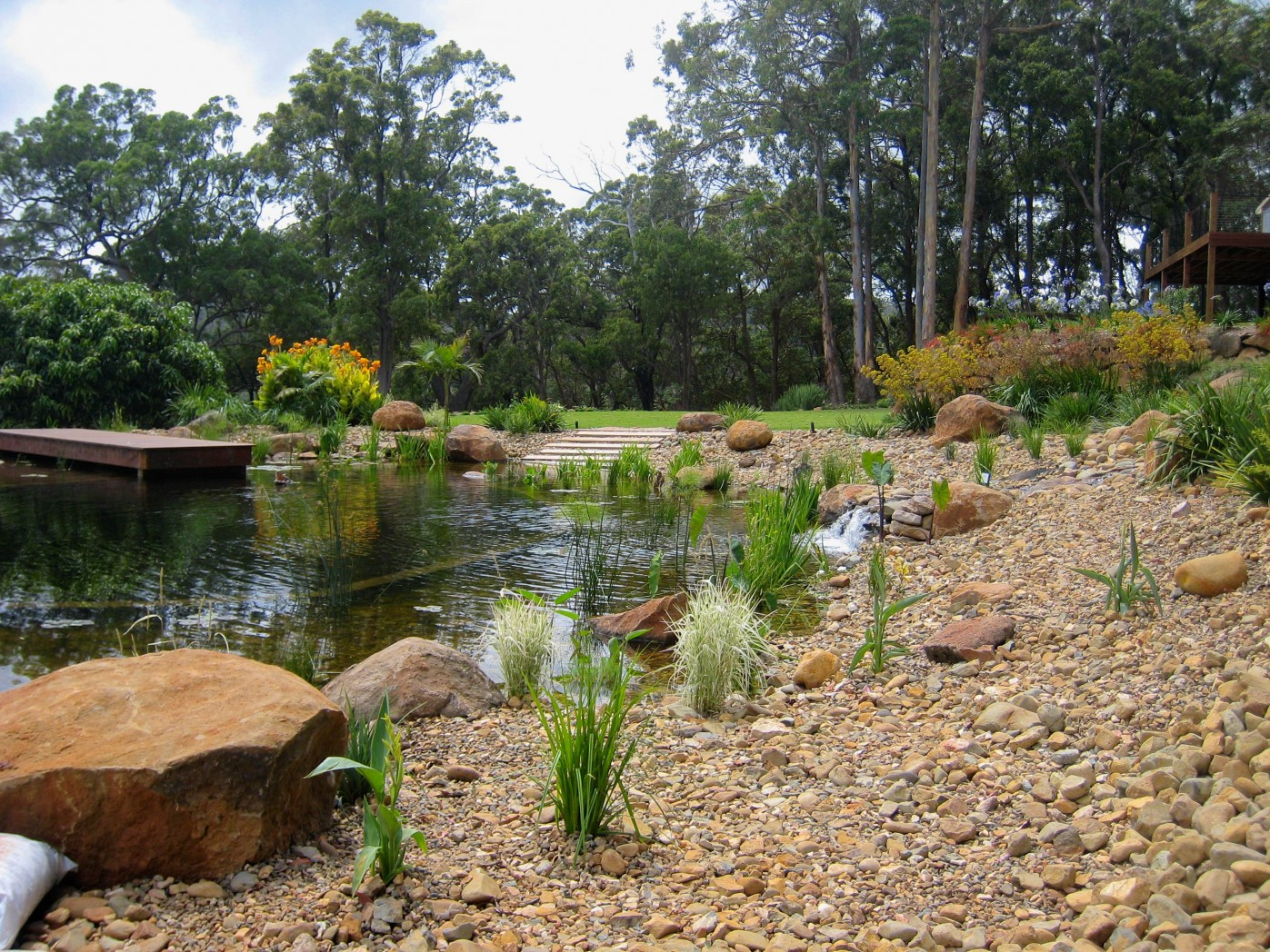 Water features natural swimming pools for Koi pond natural swimming pool